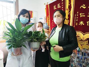 张女士给何庆医生送来了漂亮的绿植